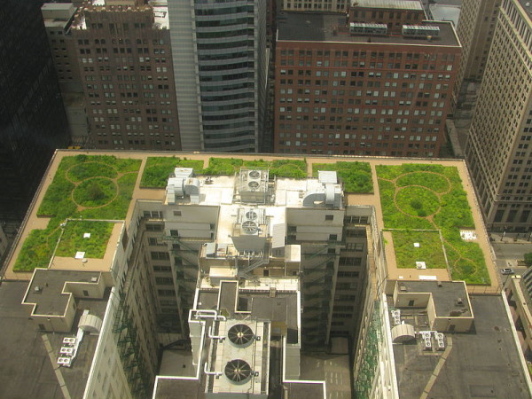 green_roofs_5