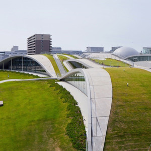 The Skyline of Tomorrow: Green Roof Architecture